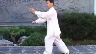 Tai Chi Quan Yang Style Traditional 108 form